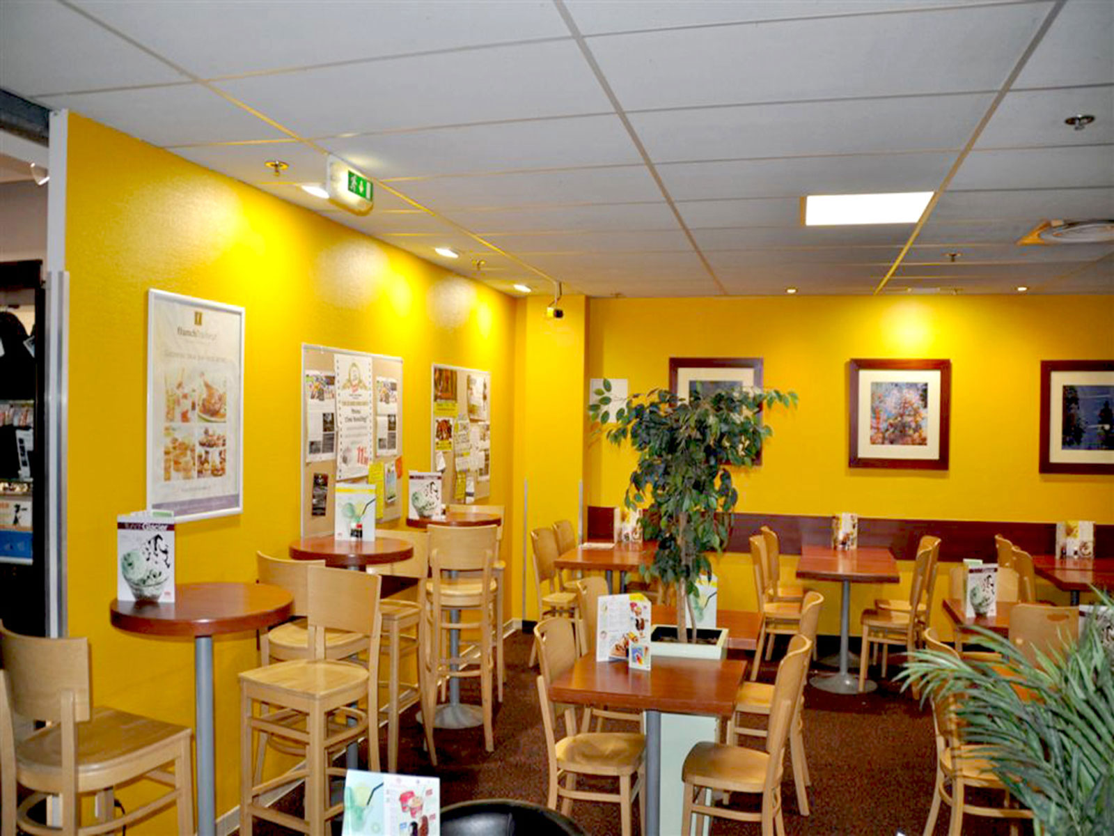 Restaurant Led Lighting In France Upshine Lighting