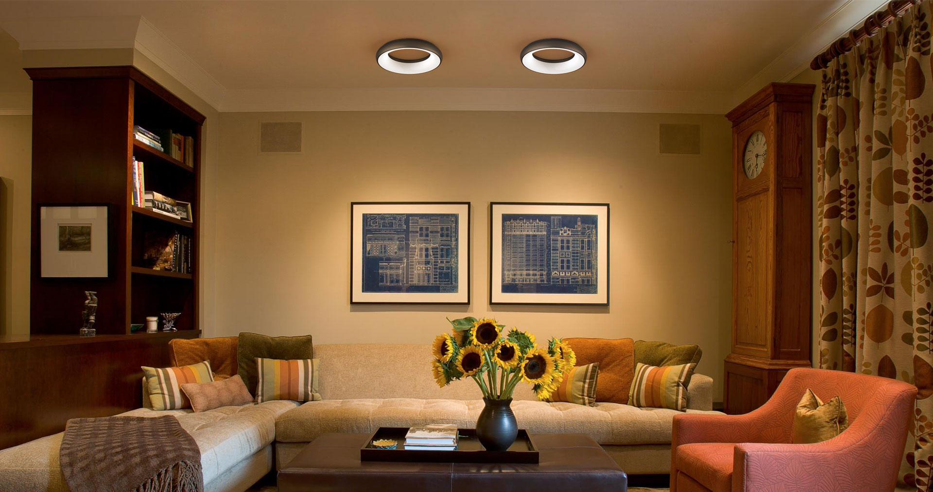 Ceiling Mount Light Fixture 18W 25W 35W