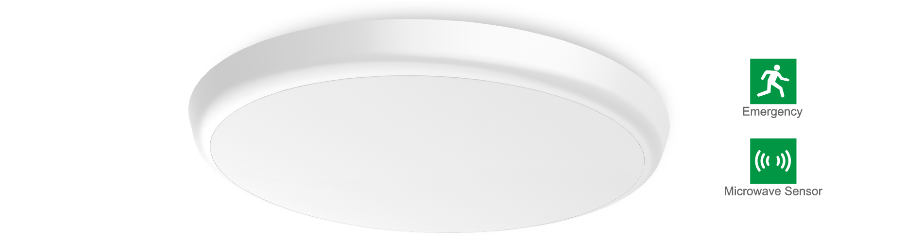AL08 LED Oyster Ceiling Light