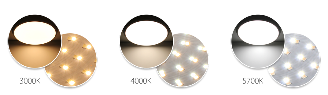 Color Changeable LED Oyster Ceiling Light