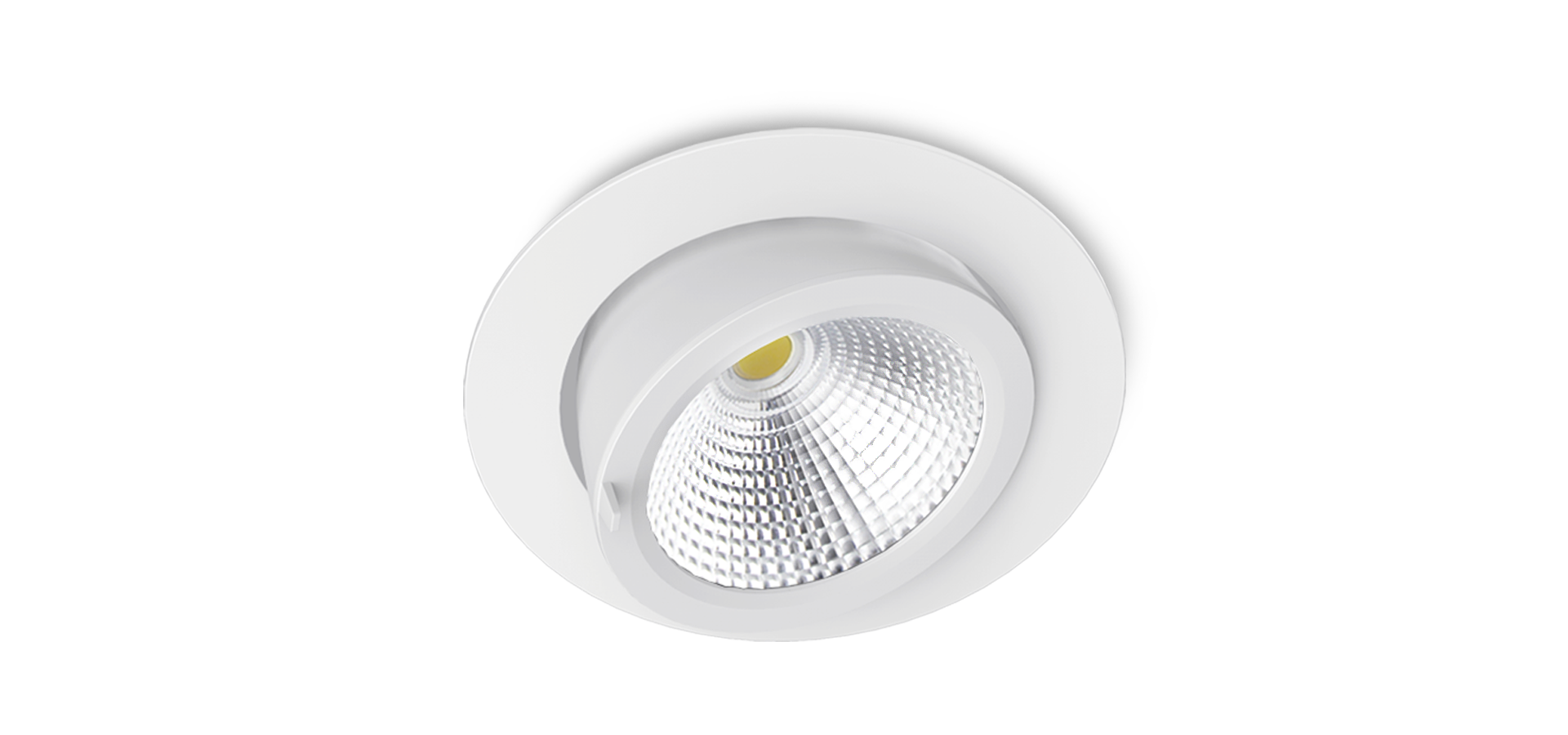 DL31 SmaTrunk Adjustable LED Downlights