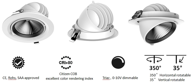 DL77 commercial downlight
