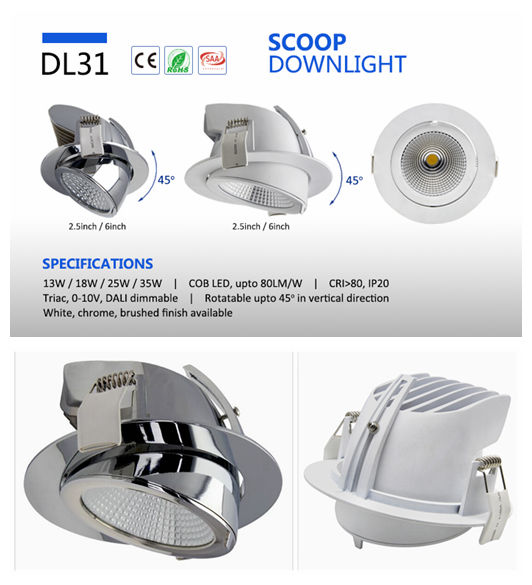 Adjustable COB Downlight